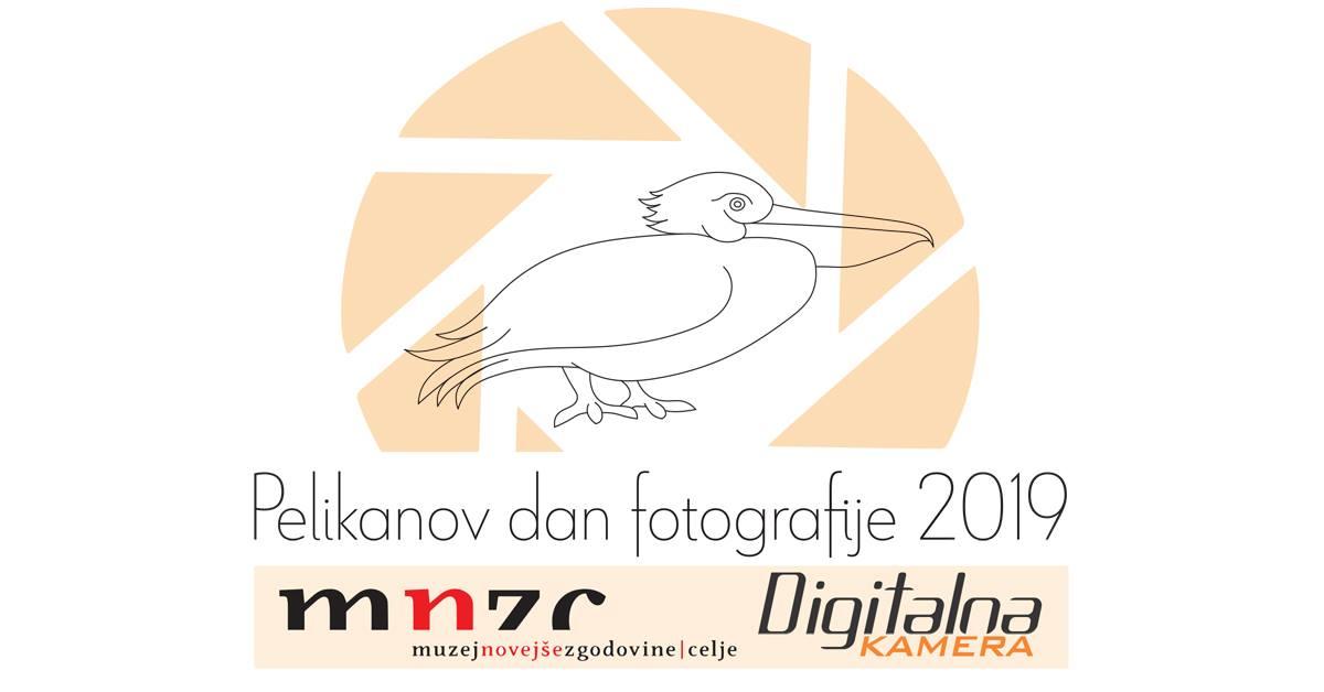 Pelikanov dan fotografije 2019.